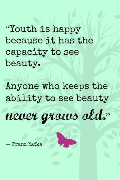 Quote about seeing beauty, from MeredithTested.wordpress.com